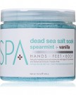 Spearmint & Vanilla Dead Sea Salt Soak